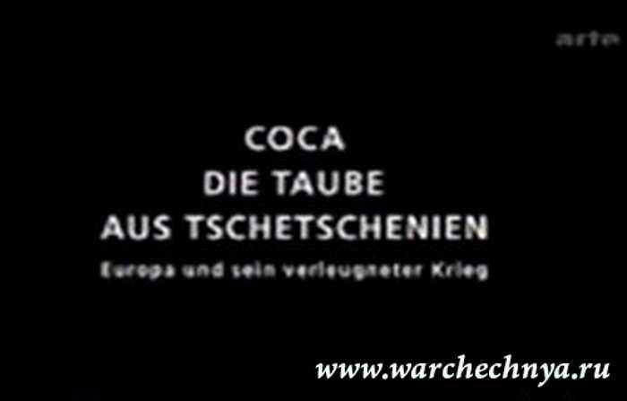 Кхокха - голубь из Чечни (Coca - die Taube aus Tschetschenien)