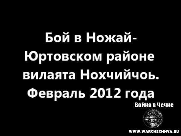 Чечня. Бой в Ножай-Юртовском районе. Февраль, 2012