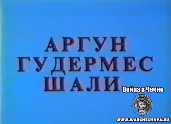 Первая чеченская война. Аргун, Гудермес, Шали. 1995 год