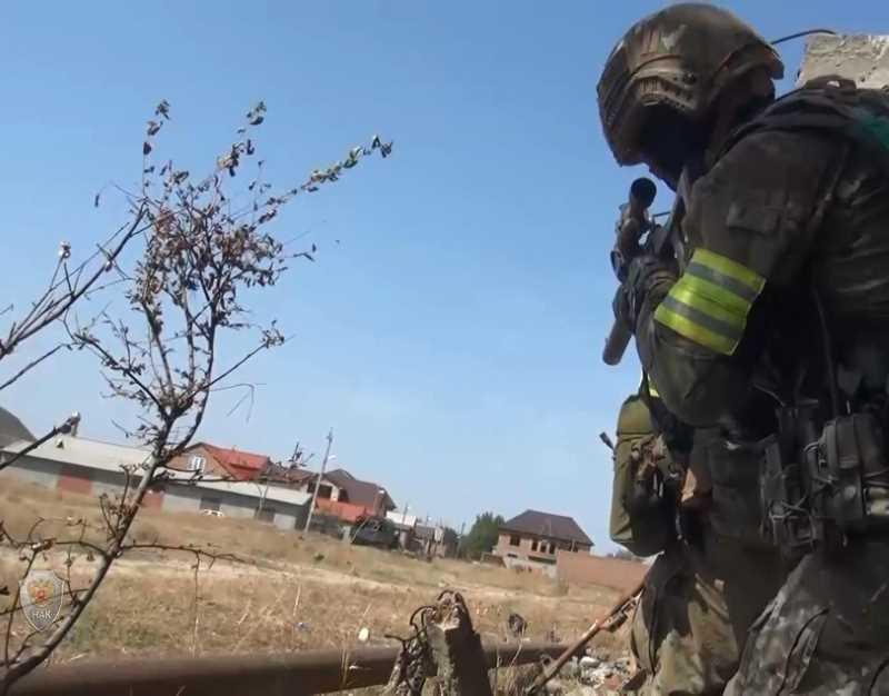 Восемь человек стали жертвами конфликта на Северном Кавказе с 28 августа по 3 сентября