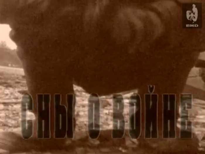 Первая чеченская война. Взгляд. Сны о войне. Выпуск от 16.02.1996.