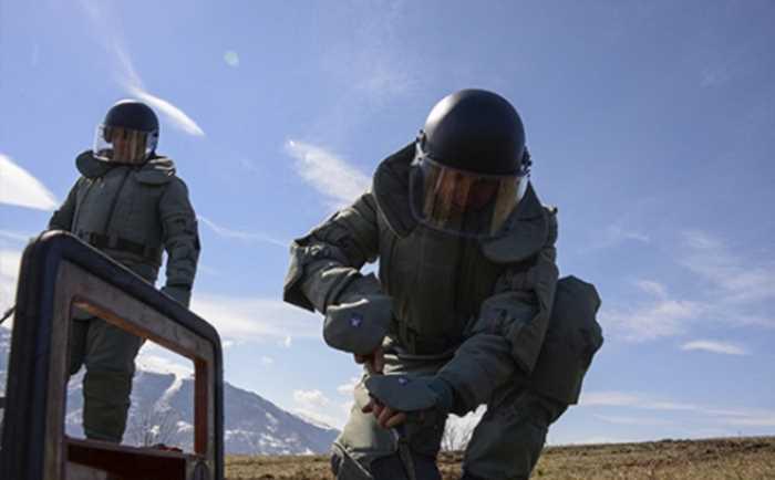 Военные разминировали около 500 га лесов в Чечне, уничтожив порядка 3 тыс. боеприпасов
