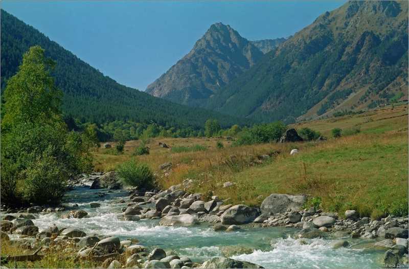 В ходе вооруженного конфликта на Северном Кавказе с 6 по 12 ноября жертв не зафиксировано