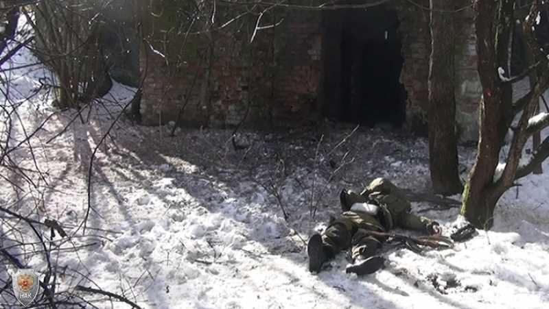 Официальная версия НАК о ликвидации боевиков в Ингушетии