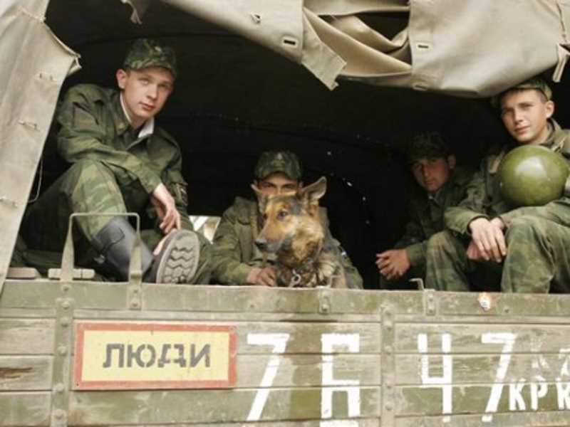 Вторая чеченская война. Рассказ кинолога-сапера