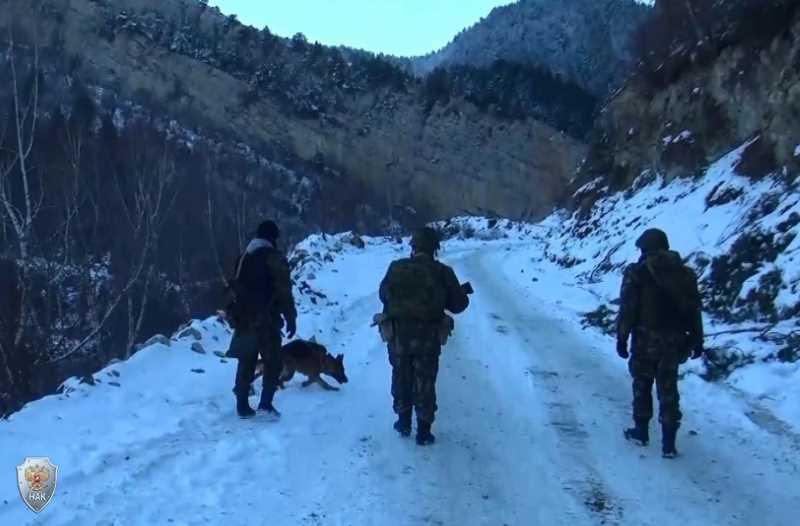 В ходе вооруженного конфликта на Северном Кавказе с 12 по 18 февраля 2018 года погибли восемь человек