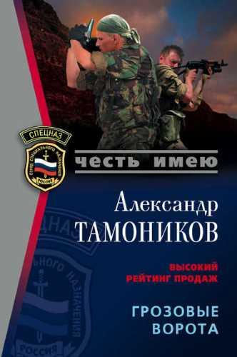 Александр Тамоников. Грозовые ворота