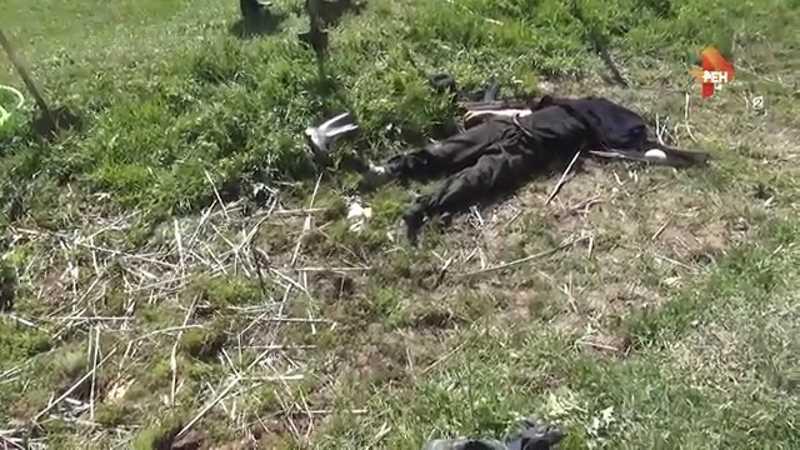 В ходе вооруженного конфликта на Северном Кавказе с 28 мая по 3 июня 2018 года погиб один человек