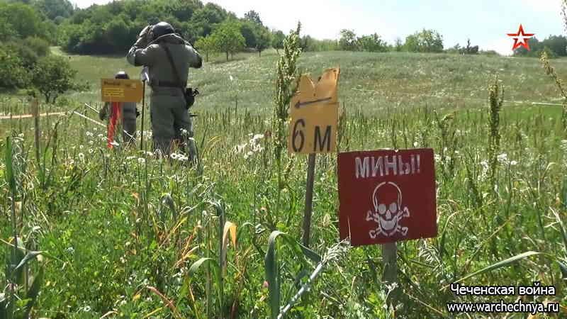 В Чечне разминировали около 600 га территории